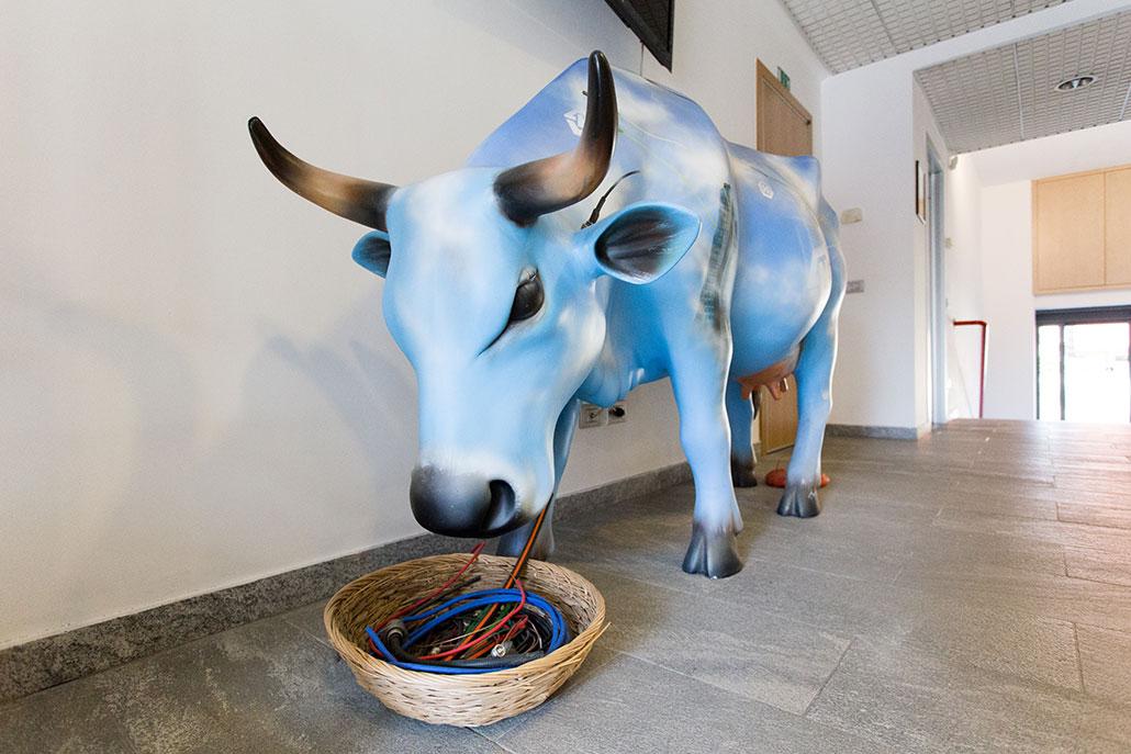 alhof-mucca-reception